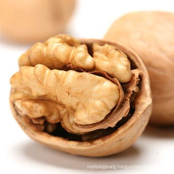 Chinese walnuts in shell/bulk walnuts kernels