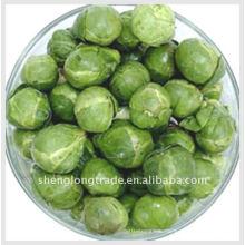 13cm Cabbage vegetable import