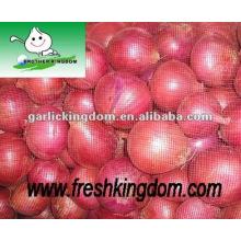 Frische rote und gelbe Zwiebel, neue Ernte Zwiebel