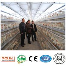 Tierzucht-Geflügel-Batterie-Schichtkäfig