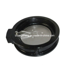 Wafer-Type Swing Check Valve with The Spring Actuated Disc