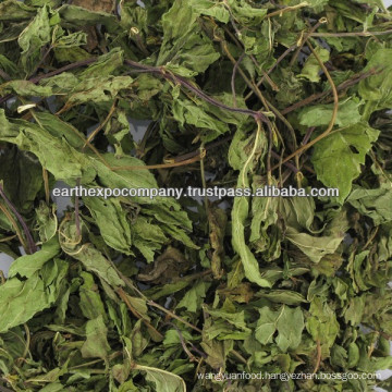 Dehydrated spearmint leaves