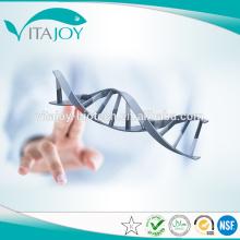 Buena calidad alta pureza nootropics Piracetam 98% CAS: 7491-74-9