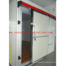 Sliding Door for Frozen Cold Room Color Coated Stainless Coated