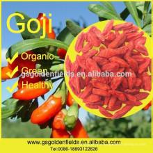 2017 new crop Organic Goji Berry