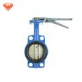 Proveedor de China hierro dúctil válvula de mariposa de 4 pulgadas