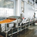 Ligne de production de fruits et d'orange