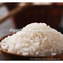 sushi rice suppliers in china
