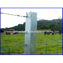 1.86kg/M Black Painted and Galvanized Steel Star Picket