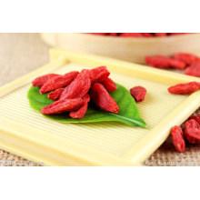 Ningxia Dried Goji Berry Supply
