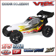 2016 Hot sale 2WD Nitro Buggy, factory fully assembled RTR rc toy car from China