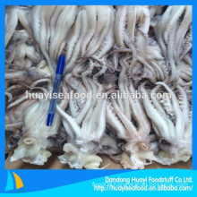 hot-selling frozen squid head and tentacle from Chinese market