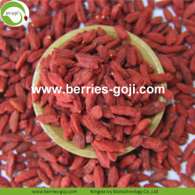 Hot Sale Factory Pasokan Kering Zhongning Goji Berry