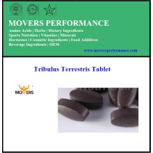 Top comprimé Pure Tribulus Terrestris de qualité supérieure