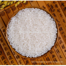 best quality short grain round sushi rice for sale