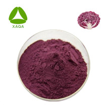Quanao supply Anti-oxident product Purple cabbage extract Anthocyanin 10% 35% HPLC