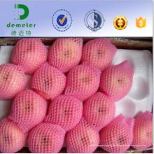 OEM-annehmbare freie Proben boten Apfelverpackungs-Schaum-Netz für Industriegebrauch der frischen Frucht an