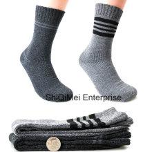 Vente chaude haute qualité hiver thermique Terry chaussettes
