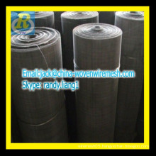 window insect screen mesh /black wire cloth