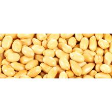 Roasted Peanuts/Salted Peanuts/Spicy Peanuts