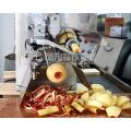 Chinesischer kommerzieller elektrischer Apple Peeler Corer Slicer