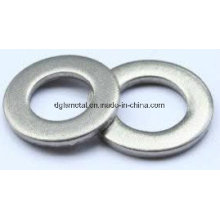 Plain Washer/Flat Washer /Washer with High Quality