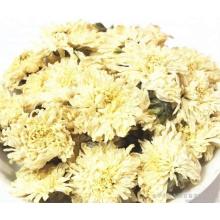 Organic Yellow Chrysanthemum Tea