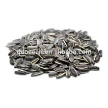 Wholesale sementes de girassol chinesas com preço competitivo
