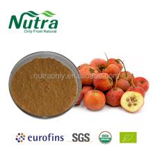 Poudre d'extrait de fruits d'aubépine biologique