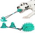 Pet hot sale double sucker rubber fairy ball molar rod dog toy