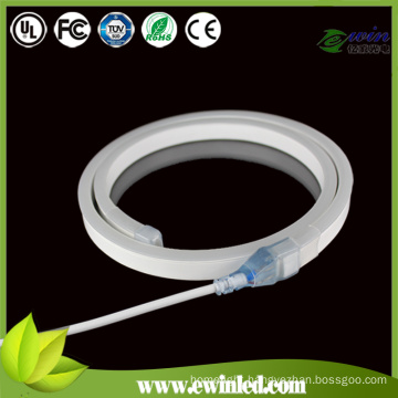 240V LED Neon Flex for Building 25mm Diameter