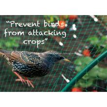 polyethylene anti bird netting