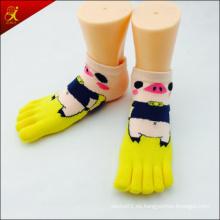 Encargo 5 calcetines del dedo del pie