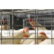 Guter Preis! Automatisches Geflügelnippel-Trinksystem / Hühnertrinker