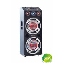 Профессиональный диктор Hi-Fi Speaker DJ Stage E22