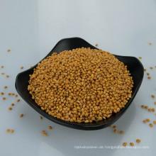 Preis von Yellow Broomcorn Millet