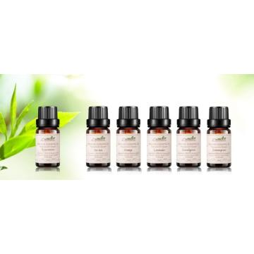 wholesale essential oil bottles aromatherapy essential oil