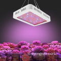 led coltiva doppio interruttore 600W