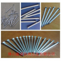 """1""""-6"""" Polished Common Nail/Common Round Wire Nail Price/Iron Nails"""