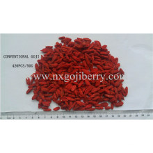 Goji Berry Export