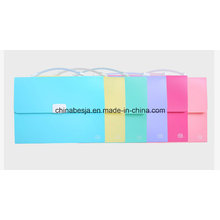 A4 and FC Size Expanding File, China Manufacturer of Expanding File, China Factory of Expanding File