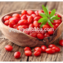 Bajo pesticida secado Sweet Goji Berry
