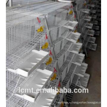 Специализирующаяся на производстве перепела клетки автоматические кормушки.