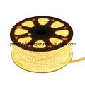 12V / 24V SMD5050 LED String Tira de luces LED de Navidad