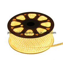 Ruban lumineux LED 3 fils Corde lumineuse LED (forme ronde)