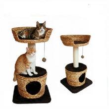 Cat Claws Scratcher Schleifbrett Spielzeug
