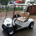 Carrinhos de golfe elétricos da polícia de 2 lugares
