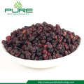 Kering Schusandra Chinensis Berries