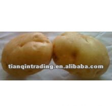 chinese potato supplier
