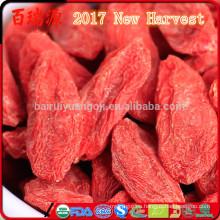 2017 New Harvest Dried Goji Berry Original Ningxia wolfberry Venta a granel